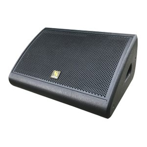 LE1200S 12 inch Low Profile PA Stage Monitor System